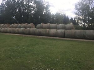 Hay for sale.