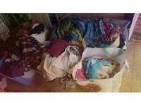 HUGE bundle of mixed clothes
