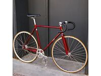 Fixie Bike/Fixed gear Bike/road bike