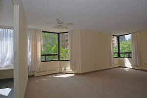 Large Newly Renovated Corner-Unit!  Best Location in the City!