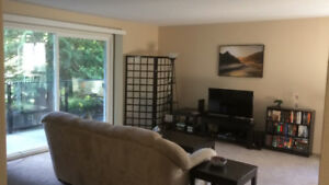 1 Bedroom For Rent in Apartment Close to Downtown