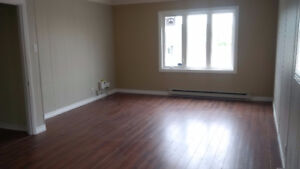 MUN Area. Spacious Main Level Apt. Washer and Dryer plus Parking