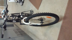 Full suspension mountain bike static ds.xc ccm