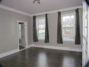 Bright, spacious newly renovated 2 bedroom apartment (FLAT)