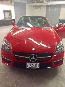 2014 Mercedes-Benz SLK-Class SLK 55 AMG Coupe (2 door)