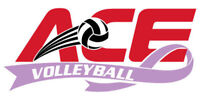 ACE CHARITY VOLLEYBALL Tournament 2017 - PMH Cancer Center