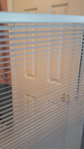 White Levelor Blinds (set of 2)