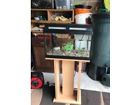 42 l fish tank v g c 50 cm long full set up with stand filter light lid gravel ornament all work