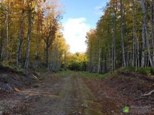 48 000$ - Terre à bois à vendre à St-Ulric