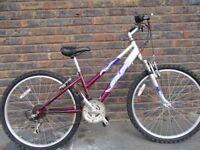 Small Ladies/Girls Mountain bike