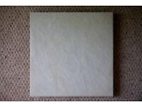 12 Colorado beige (pale neutral creamy grey) floor tiles.