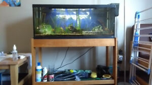 Aquarium 30 gallon with all necessities including stand