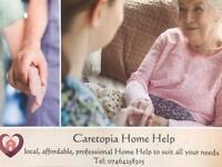 In Home Help/carers
