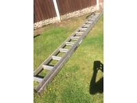 For Sale Youngman Double Extension Ladders