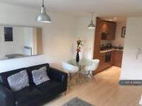 1 bedroom flat in Lower Ormond Street, Manchester, M1 (1 bed)