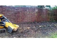 Tree stump grinding Epping