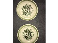 2 apple grove J & G Meakin plates