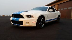 2012 FORD MUSTANG SHELBY GT500 W/NAVIGATION 6 SP MANUAL -KELOWNA
