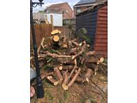 Free fire wood. Needs to season