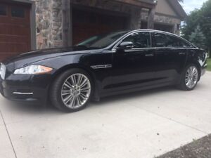 Jaguar XJL Supercharged--Low Kilometres 55K