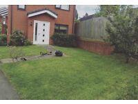 GRASS CUTTING & GARDEN SERVICES & JET WASH