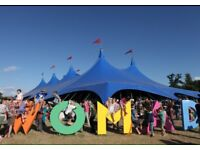 Womad. Two back stage tickets £300