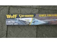 Wolf pressure washer and long lance