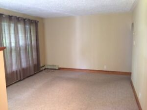 Roommate Wanted - Hydrostone Area, Two Bedroom Apartment