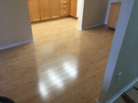 Laminate, Vinyl, Sheet Flooring, VCT Tile and more