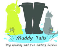 TAILORED DOG WALKING & PET SITTING SERVICE - fully insured, pet first aid trained, & police checked.
