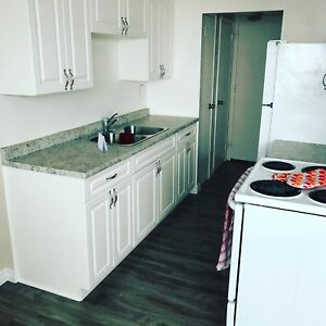 Central renovated apt- mins to Sault College! Pets welcome!