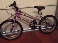 "Kids (girls) bike 13"" frame with 6 gears"
