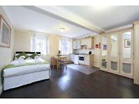 modern studio flat in Marylebone