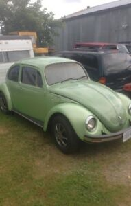 Classic Beetle From Mexico