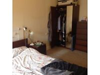 FESTIVAL LET: Extremely central spacious double room available 1st August