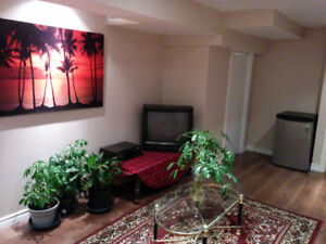 Spacious Basement Apartment One Bedroom + Den