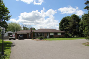 Stunning House With 40*25 Shop/Garage in 2.5 Acres Land