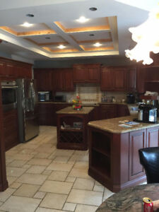 Wood Kitchen Cabinets with Island and Granite