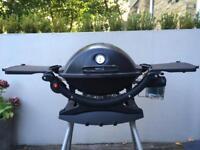Weber Q100 BBQ