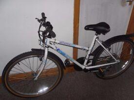 emmelle atlanta free spirit bike