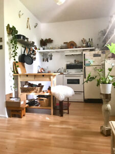 Bright and Spacious Studio Apt - Dundas West - Trinity Bellwoods