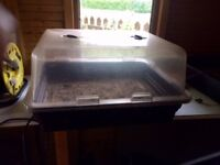 Two Electric seed propagators only used once