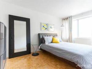 Short termFurnished luxe  2 bedrooms Downtown Montreal  Sept-May