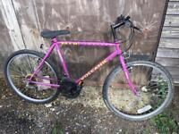 """Ladies bike 26""""wheels"""