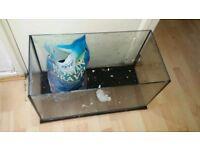 FREE Fish tank aquarium