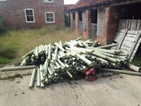 100 + Protective Tree Guards. Job Lot, No Splitting. Collection Only.