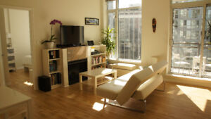 1 BD furnished, spacious unit for rent for 3 months approx