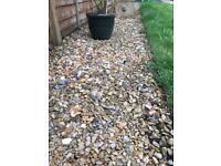 pebbles - garden stones
