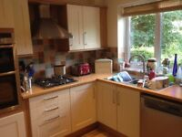 Second hand MFI Cream Shaker Kitchen units plus dishwasher and vented tumble dryer for sale