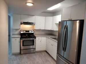 Brand new 2 bedroom suite utilities included avail august 1st